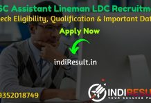 HSSC Assistant Lineman LDC Recruitment 2020 - Check Haryana Staff Selection Commission Haryana Electricity Board HSSC LDC, UDC, JSM, ALM Recruitment Notification, Eligibility Criteria, Age Limit, Educational Qualification and selection process. Haryana HSSC Assistant Lineman Jobs 2020 Notification is released. And this HSSC Notification for the 2978 JSM, Assistant Lineman, Assistant Law Officer, LDC, Protection Assistant, Store Assistant, Section Officer Account, Divisional Accountant, Pharmacist,Stenographer, Steno Typist, UDC, Hindi Translator, Jr Accountant and Other Posts.