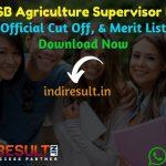 RSMSSB Agriculture Supervisor Result 2020 Download RSMSSB Krishi Paryavekshak Result : Download RSMSSB Rajasthan Agriculture Supervisor Result, Cutoff & Merit List 2020. The Result Date Of RSMSSB Agriculture Supervisor Exam is 22 January 2020.