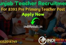 Punjab Teacher Recruitment 2020 - Check Punjab Education Recruitment Board 8393 Pre Primary Teacher Notification, Eligibility Criteria, Salary, Age Limit, Educational Qualification and Selection process.