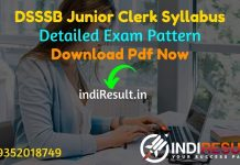 DSSSB Junior Clerk Syllabus 2021 - Download DSSSB Clerk LDC Syllabus pdf in Hindi & English. Download DSSSB Jr Clerk Syllabus Pdf. Get DSSSB Syllabus Pdf.