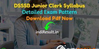 DSSSB Junior Clerk Syllabus 2021 - Download DSSSB Clerk LDC Syllabus pdf in Hindi & English. Download DSSSB Jr Clerk Syllabus Pdf. Get DSSSB Syllabus Pdf.