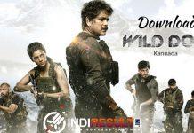 Wild Dog Full Movie Download - Nagarjunas Wild Dog Full Movie Free Download in Telugu/Hindi Netflix leaked by filmyzilla, filmywap, 9xflix, moviesflix.